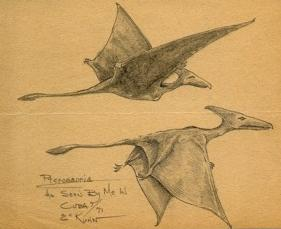 U. S. Marine's sketch of two pterosaurs observed in Cuba